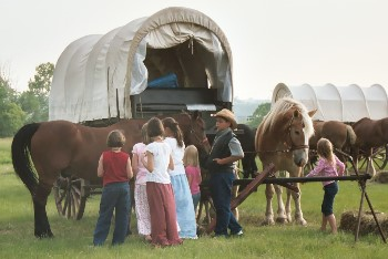 Children visiting with horses, photo by J. Turner